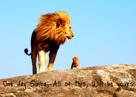 cub-cute-lion-lion-king-mufasa-simba-Favim.com-91525