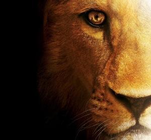 eye-of-aslan